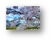 0309ブログ画像.jpg